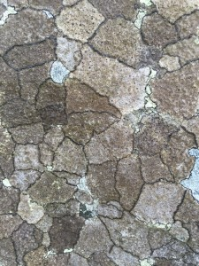 Lewis mill rock closeup